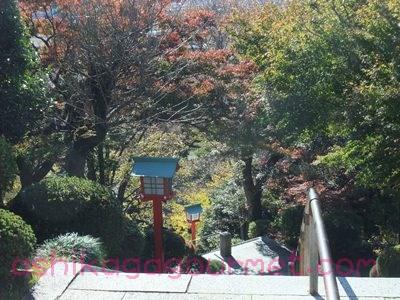 織姫神社3