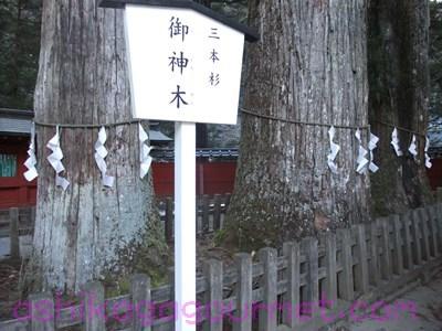 日光二荒山神社42
