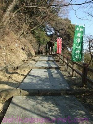唐沢山神社26