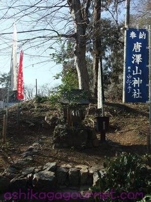 唐沢山神社14