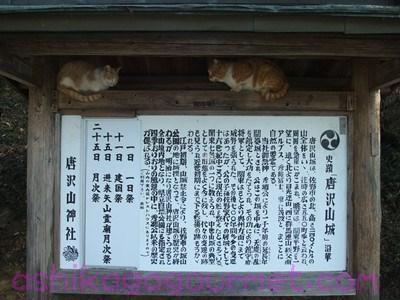 唐沢山神社2
