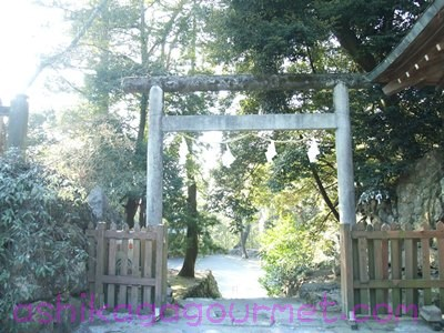唐沢山神社47