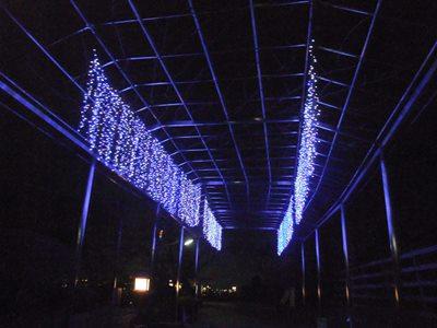 夜の織姫神社