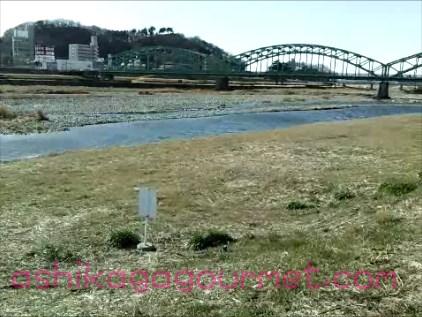 渡良瀬川スナップショット 2 (2013-05-08 15-05)