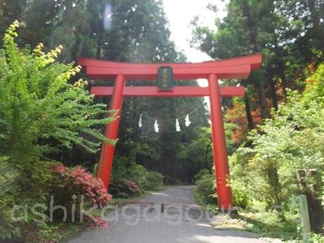 名草厳島神社(名草弁天) 足利七福神めぐり