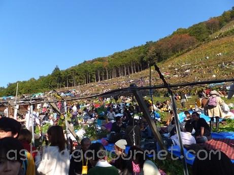 2013ココワイン収穫祭35