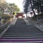 【富岡】上野国一之宮 貫前神社