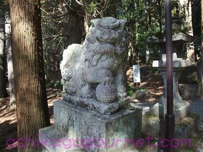 赤城神社(三夜沢町)15