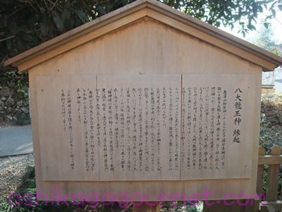 唐沢山神社12