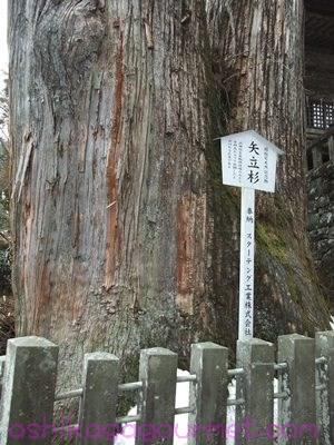 榛名神社62
