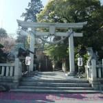 今日の八雲神社その2
