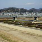 森高千里さんが協力~渡良瀬コンサートツアーで被災の八雲神社復興に