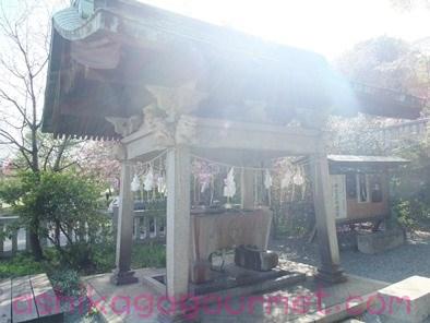 八雲神社7