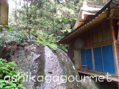 名草厳島神社81
